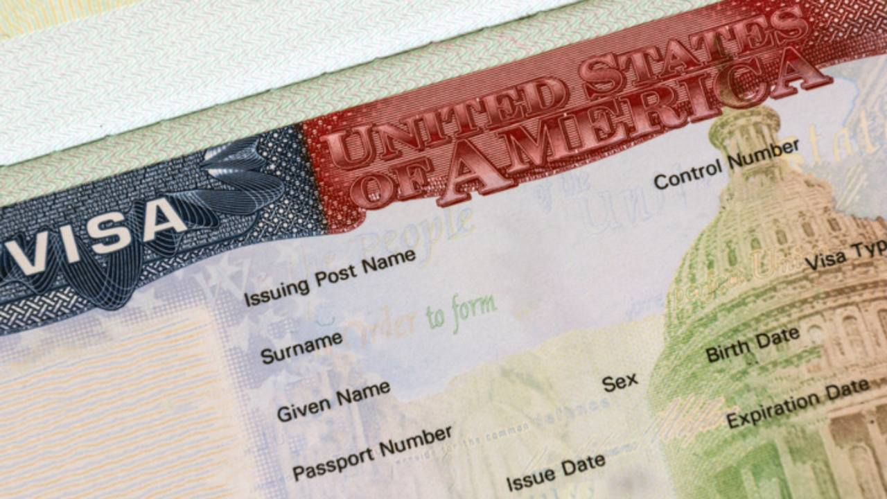 A Complete Guide to Green Card Categories title